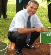 tree-planting-big